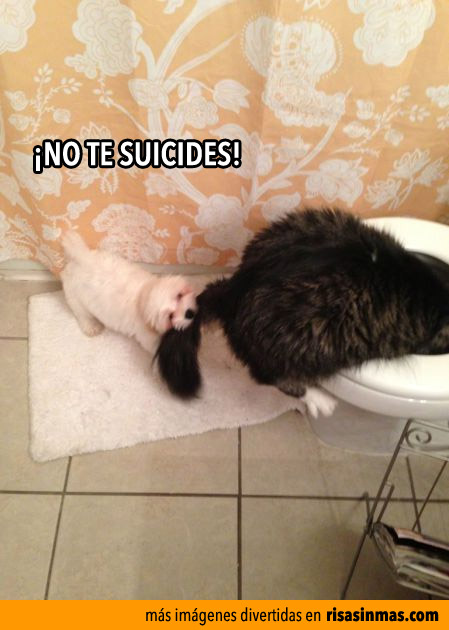 ¡NO TE SUICIDES!