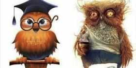 Profesor y el año escolar