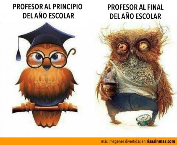 Frases Para Fin De Ciclo Escolar | apexwallpapers.com