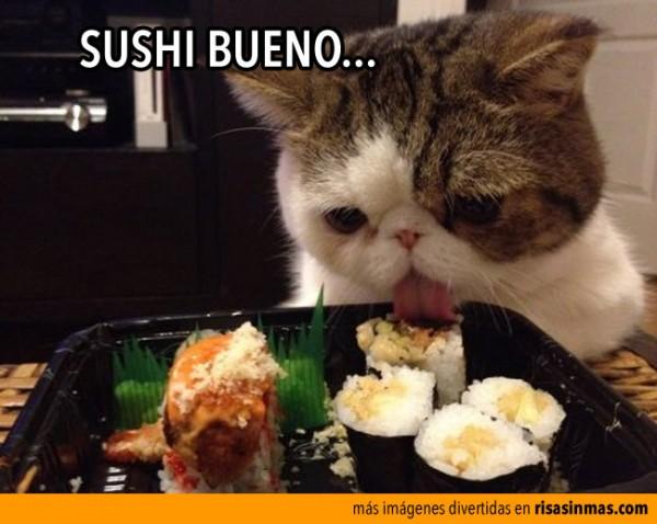 Sushi bueno
