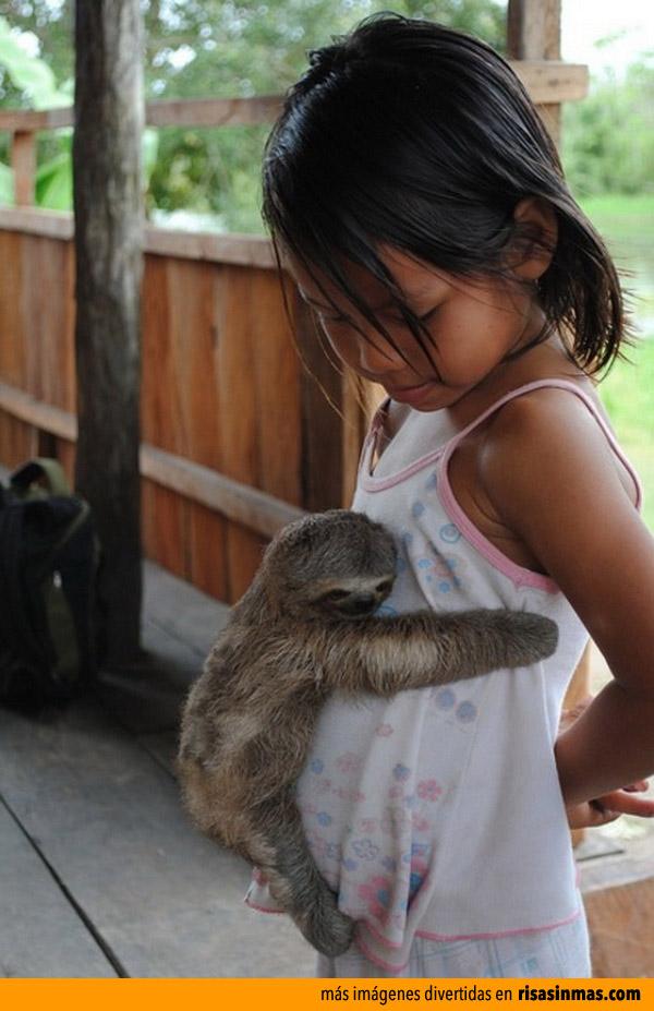 ¡Abrázame, quiero ser tu amigo!