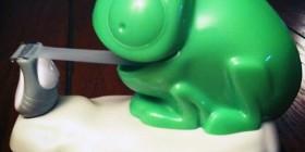 El camaleón que querrás tener