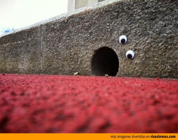Agujero con ojos móviles