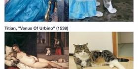 Gatos imitando cuadros famosos