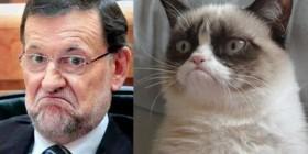 Grumpy Rajoy