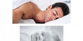 Qué monos al dormir