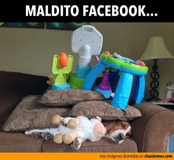 Maldito Facebook