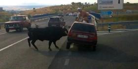 Mientras tanto en España...