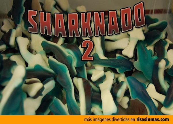 Primera imagen de Sharknado 2