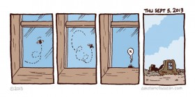 Cosas de moscas