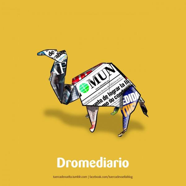 Dromediario