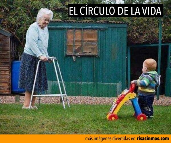 El círculo de la vida