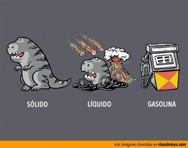 Evolución de los dinosaurios