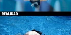 Expectativas y realidad: Nadar