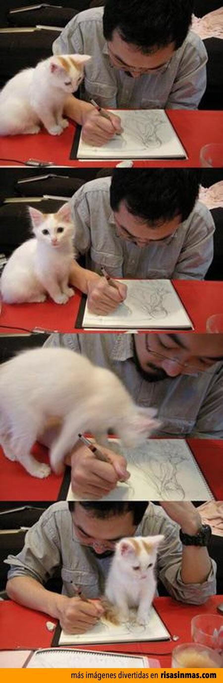 Gato llamando la atención