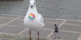 Gaviota gigante mutante de Fukushima