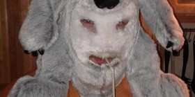 Gorro de peluche Koala