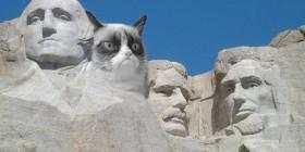 Grumpy Cat en el monte Rushmore