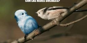 La verdad de Twitter