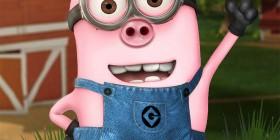 Minion cerdo