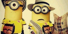 Minions cafeteros