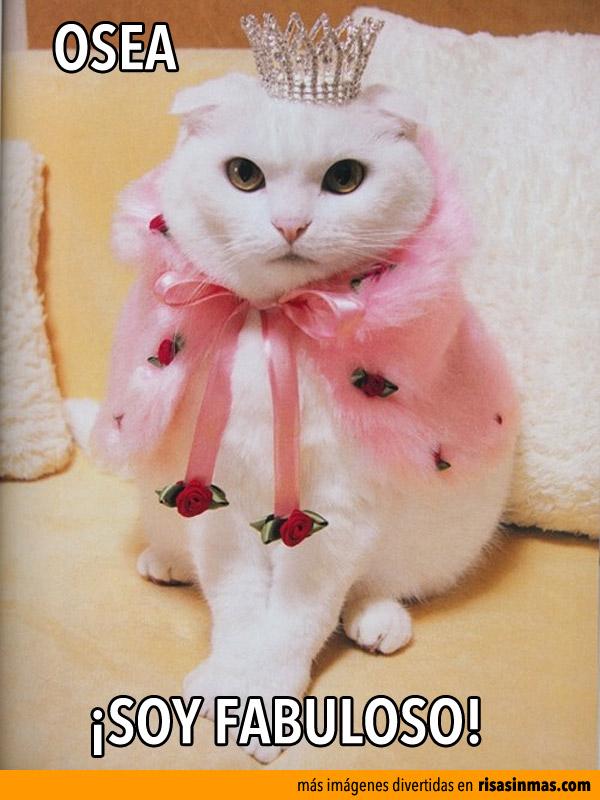 Osea, ¡Soy Fabuloso!