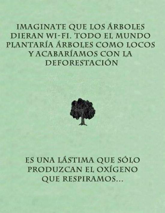 Si los árboles dieran WiFi