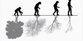 Evolución y naturaleza
