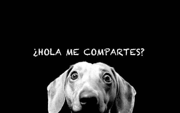 ¿Hola me compartes?