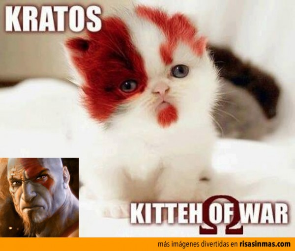 Kratos, kitten of war