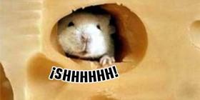 Ratón escondido en el queso
