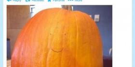 Demasiado vago para celebrar Halloween