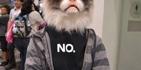 Disfraces originales: Gato cabreado