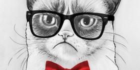 Grumpy cat versión inteligente