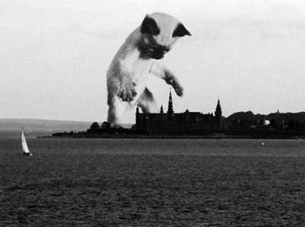 Impactante imagen de un monstruo atacando la costa de Europa