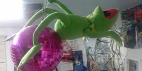 La Rana Gustavo imitando a Miley Cyrus