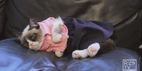 La mujer de Grumpy Cat