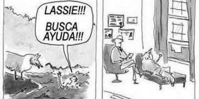 ¡Lassie, busca ayuda!