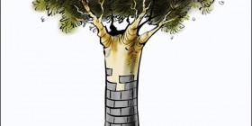 Los árboles del futuro