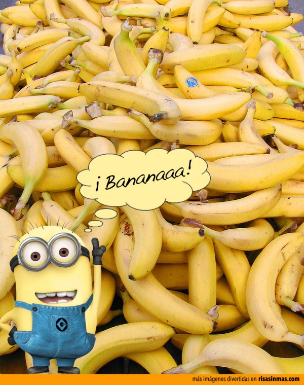 Minion feliz con sus bananas