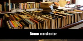 Buscando libro en librería