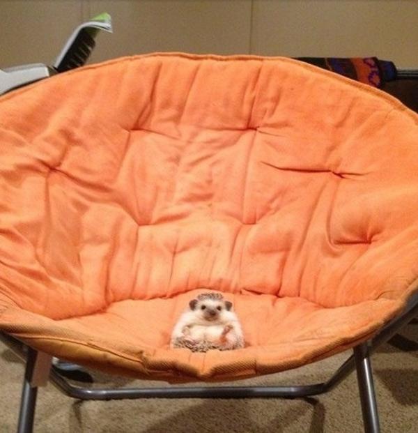 Lo siento, este asiento es mío