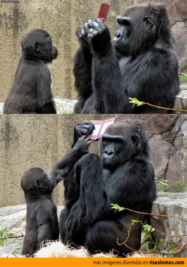 ¡Me toca a mí, mami!