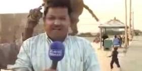Monos y reporteros se llevan muy bien
