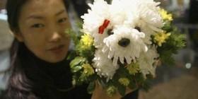 Perritos hechos con flores
