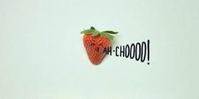 El estornudo de la fresa