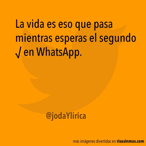 Esperando el segundo √ en WhatsApp