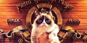 Grumpy cat visita la MGM