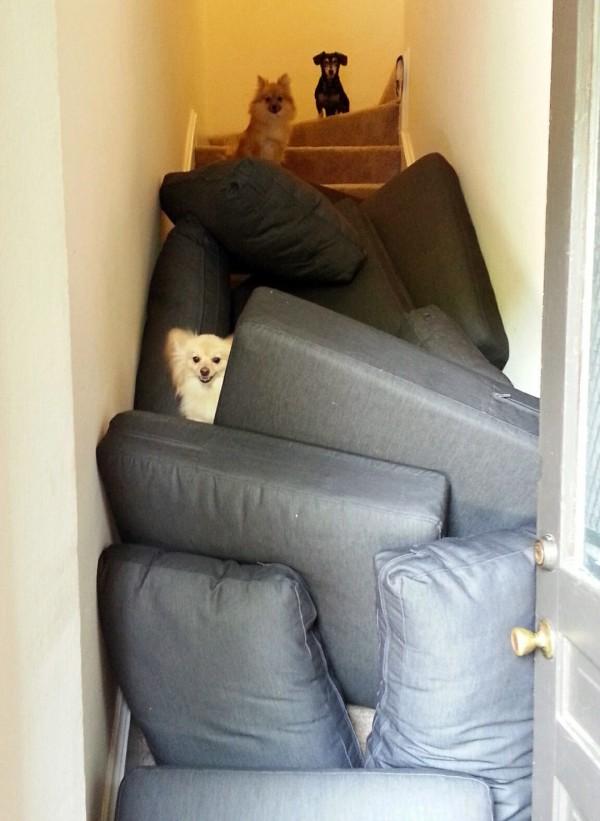 Hay que reconquistar las escaleras