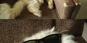 La siesta del sillón